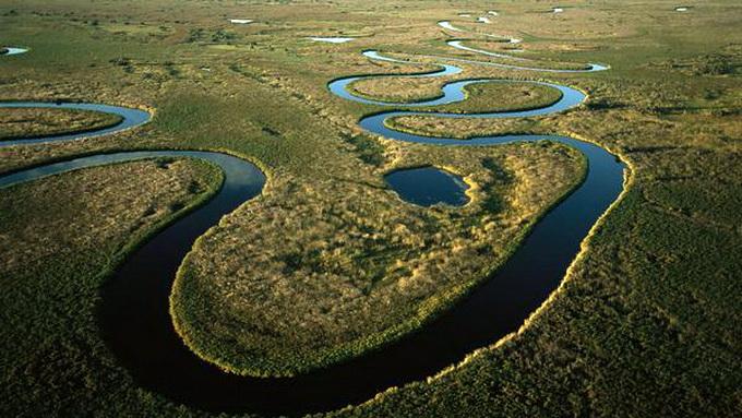 Vẻ đẹp thiên nhiên hoang dã okavango